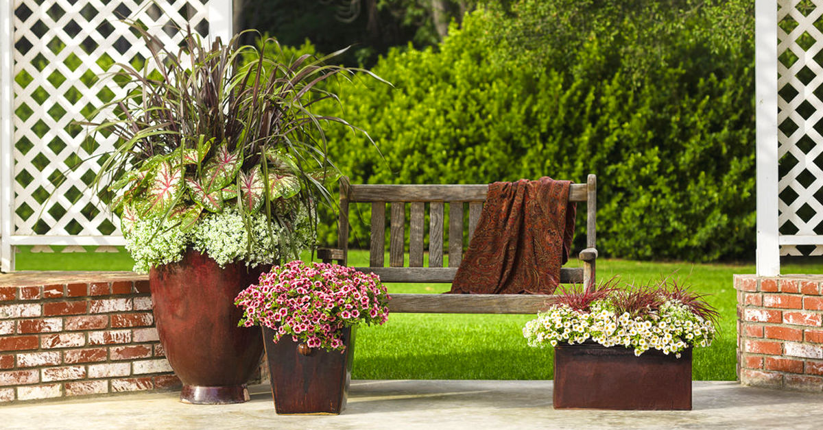 Flower Pots: Your Guide to Picking the Right Planter for You